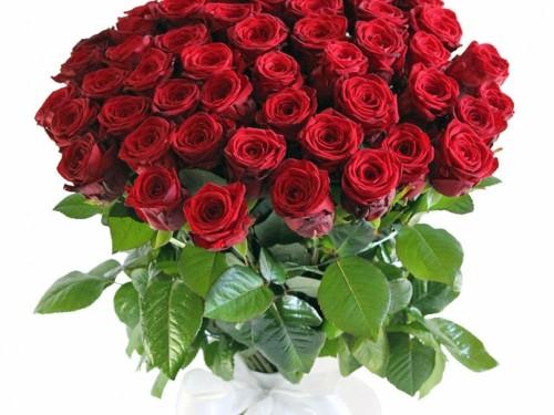 Букет из 51 красной розы Ред Наоми 70 см