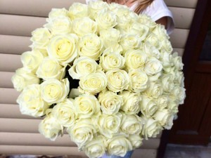 61 белая роза